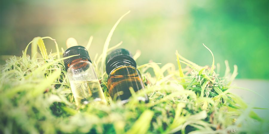IF YOU FEEL YOURSELF MAKING TOO MANY ERRORS, CBD CAN HELP