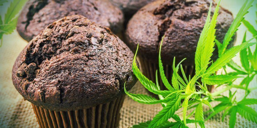 Bioverfügbarkeit: Cannabisesswaren