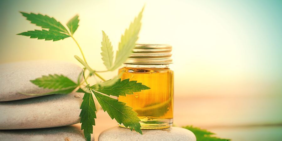 THE RECENT RISE OF CBD