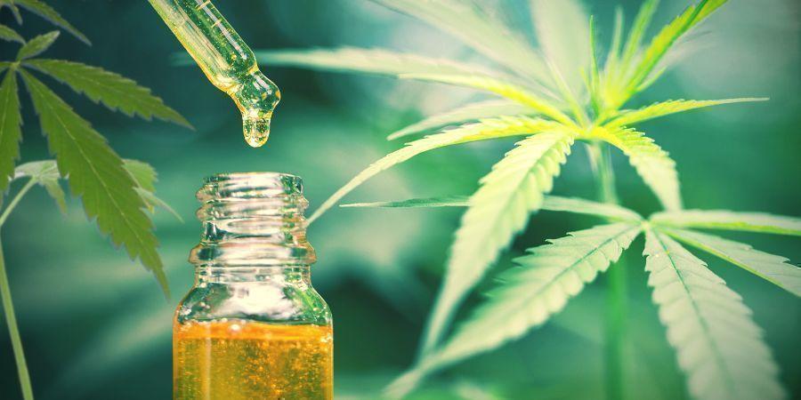 CBD Ist Die Einzige Therapeutische Verbindung In Hanf/cannabis