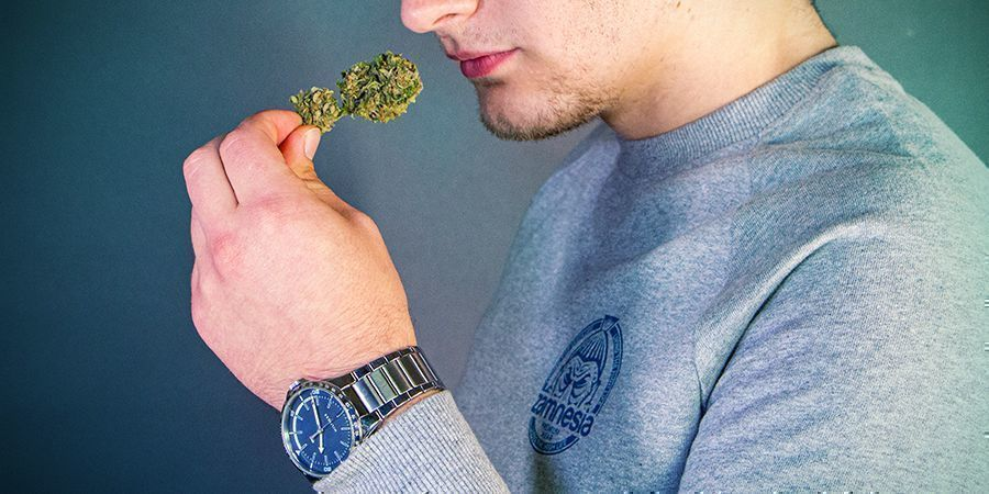Can Weed Expire?
