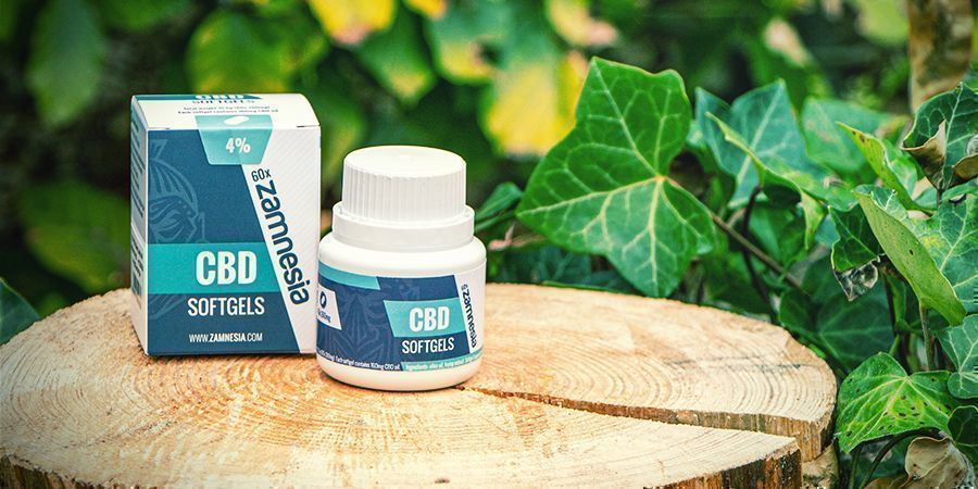 THE CBD CRAZE, AND WHAT IT'S TEACHING US ABOUT CANNABIS
