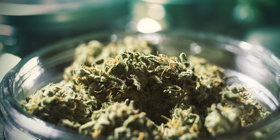 Moisture Prevention: Store Your Weed Right
