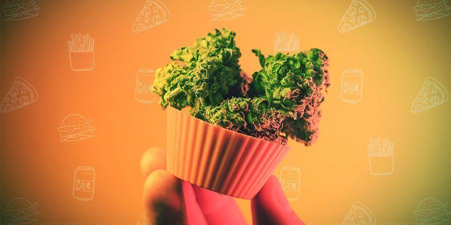 Dosierung Von Cannabisesswaren