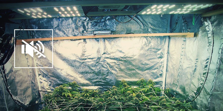 Minimising The Noise Of Your Cannabis Grow Room