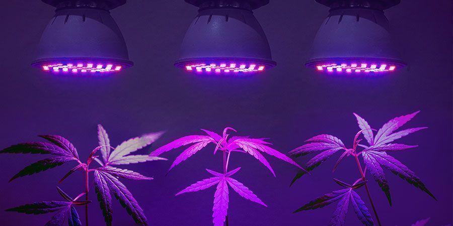 Finde die effizienteste Beleuchtungslösung