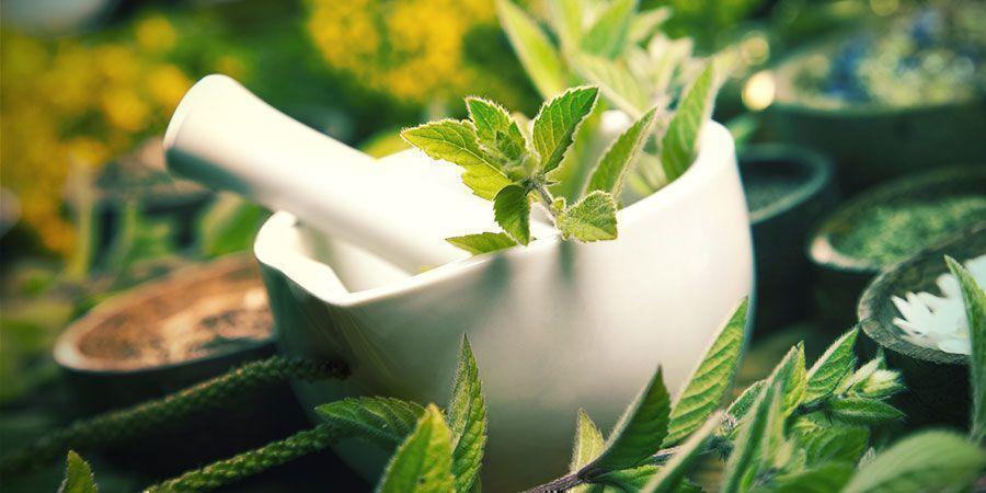 Fermentierter Pflanzensaft (FPJ) Dünger Cannabis