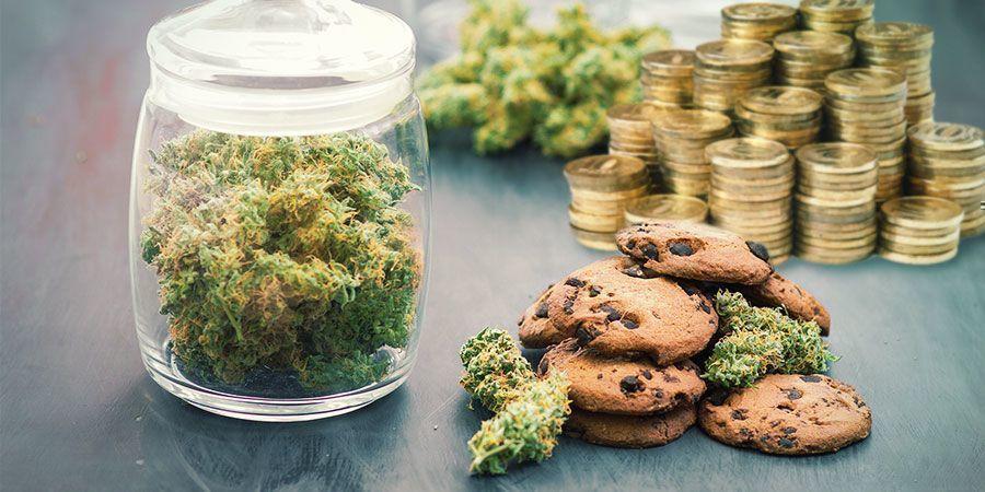 Zu Viel Geld Nur Für Cannabis Ausgeben