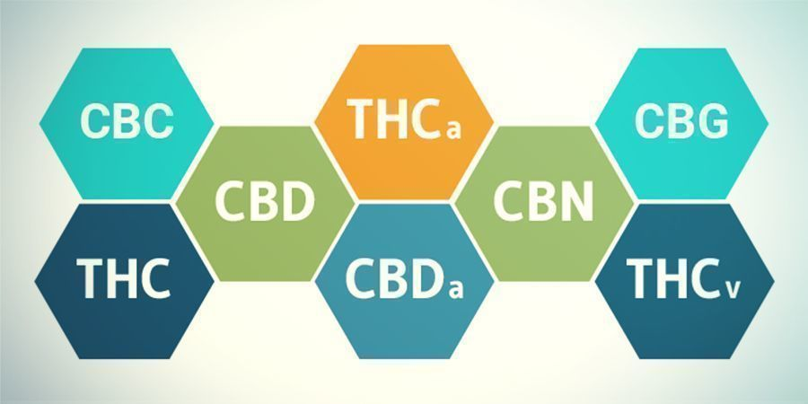 What About Cannabinoids Other Than THC?