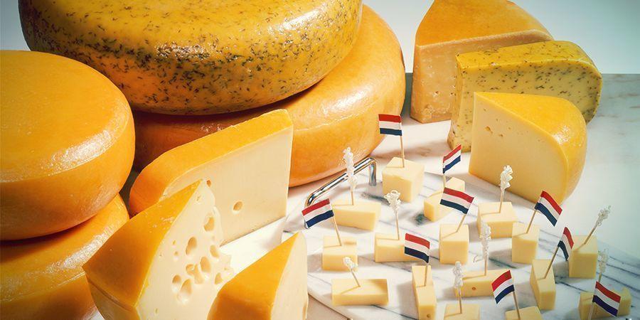 Amsterdam Stoner Snacks: Dutch Cheese