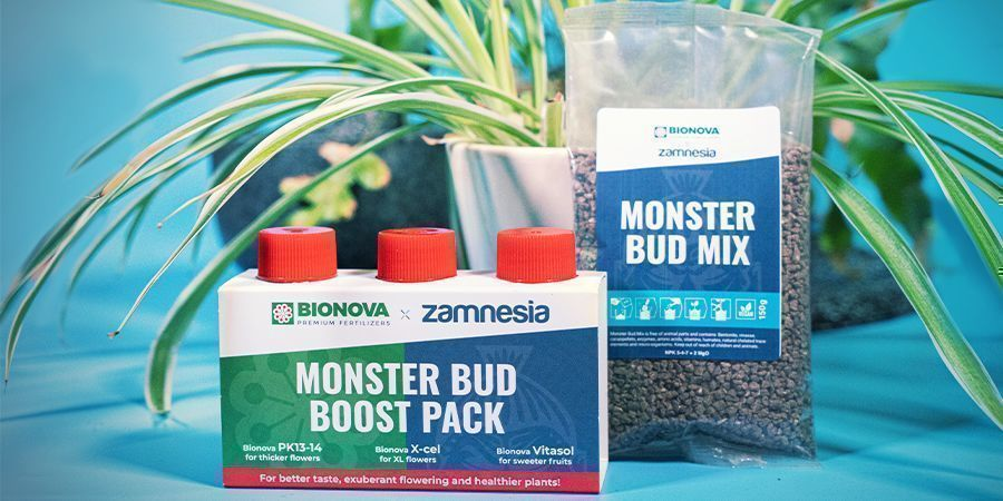 Monster Bud Mix und Monster Bud Boost Pack