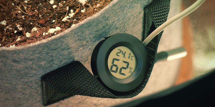 Temperature - Growing Cannabis