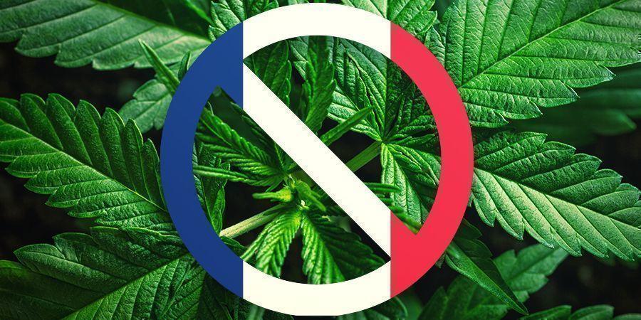 Frankreichs Cannabis-Geschichte