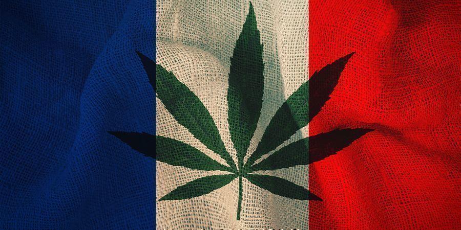 Frankreich und Cannabis: Der Plan des Ausschusses