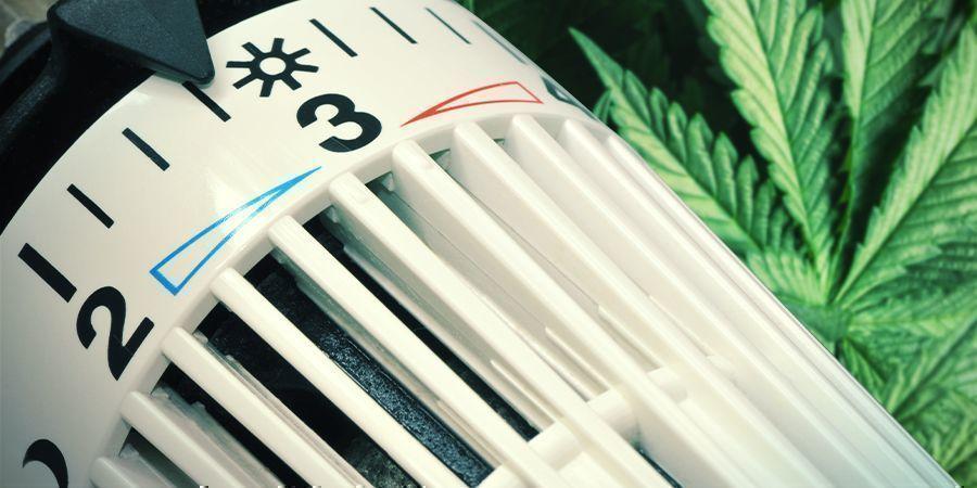 Andere Möglichkeiten, die relative Luftfeuchtigkeit zu erhöhen