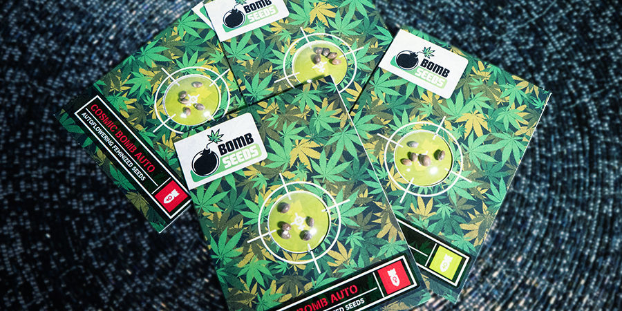Get To Know Bomb Seeds