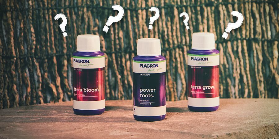 Which Type Of Nutrient To Choose?