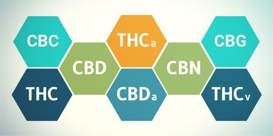 Verbindungen In Cannabis