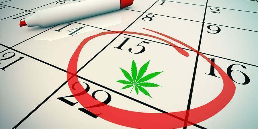 Reasons You Might Not Feel CBD's Effects: Being Impatient About CBD's Effects