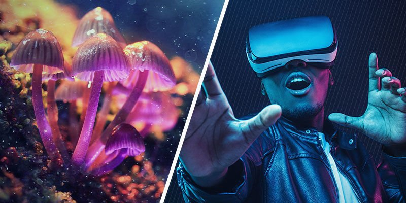 Psychedelics and VR: Parallels