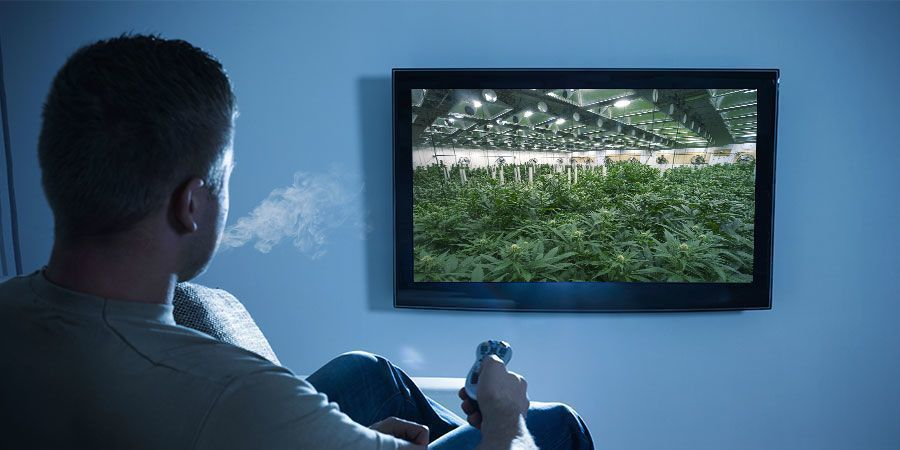 PAIRING WEED WITH DOCUMENTARIES