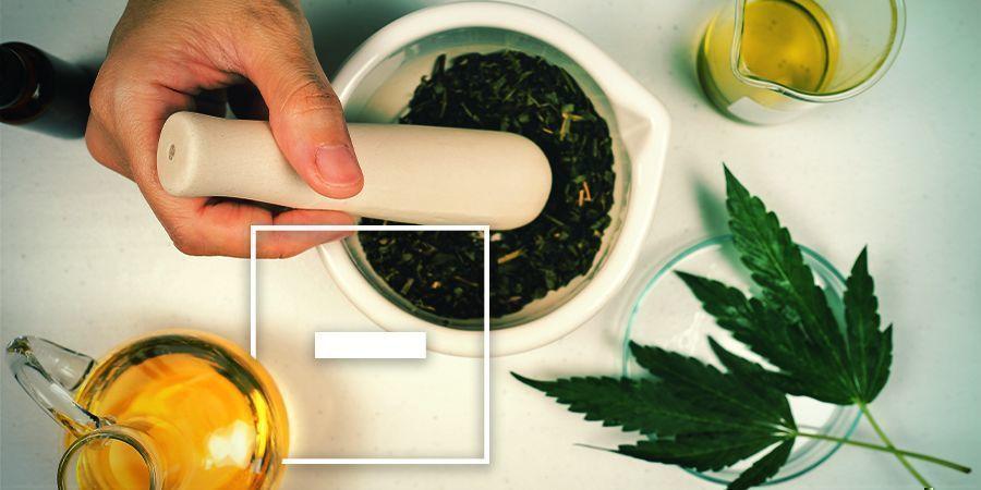 Nachteile von mit Cannabis versetztem Olivenöl