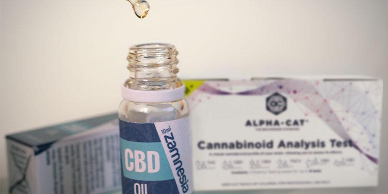 Can CBD Ruin a Drug Test?