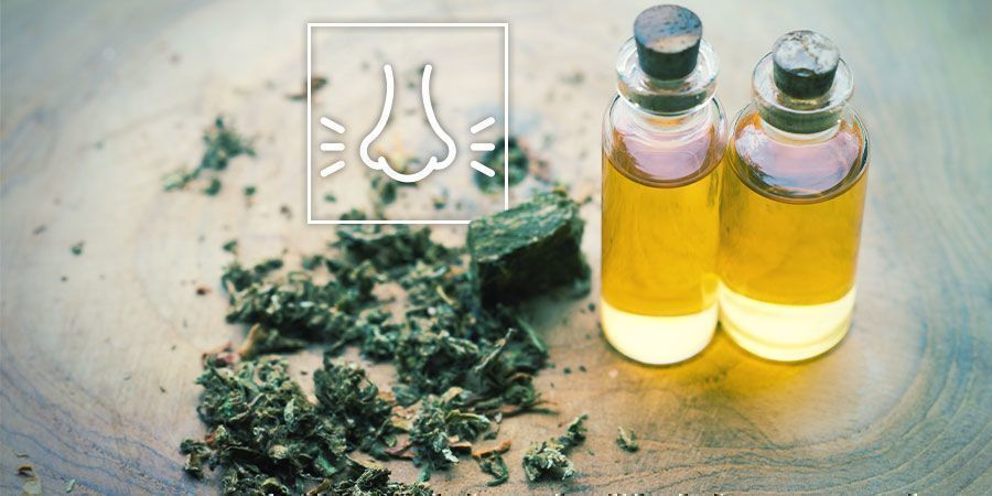 Relieve Tension With Cannabis: Think About the Terpenes