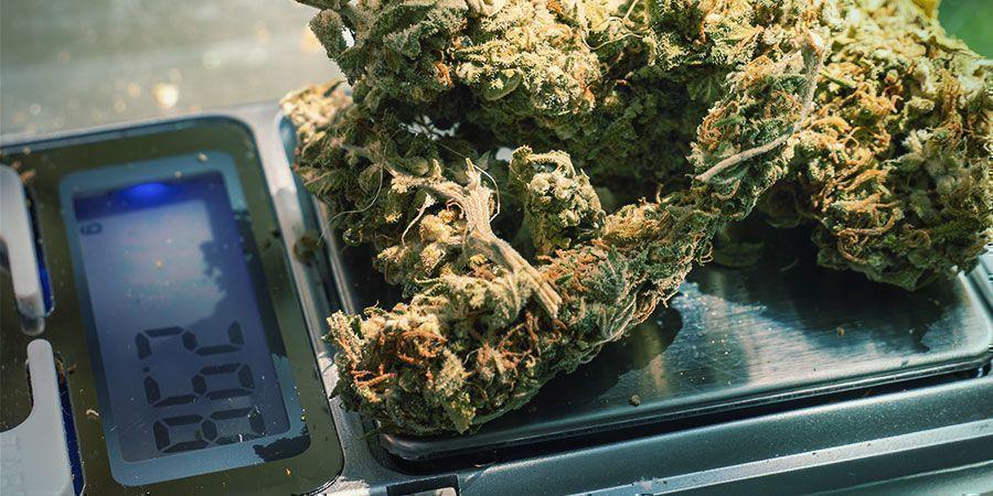 Spannungsabbau mit Cannabis: Probiere unterschiedliche Dosierungen aus