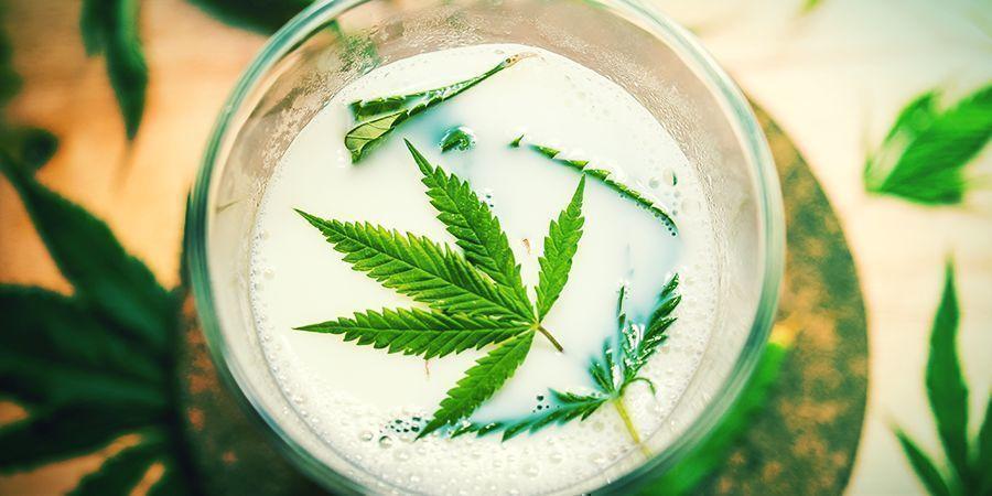 Andere Natürliche Zutaten (Milch, Cayennepfeffer, Zimt) - Cannabis-Blattspray