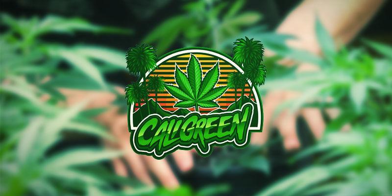 Cali Green | Youtube