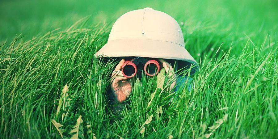 Verstecke Deinen Vorrat im Freien