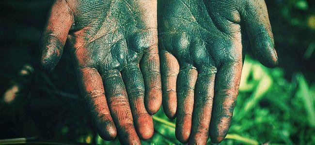 Wie Man Finger-Hasch Herstellt