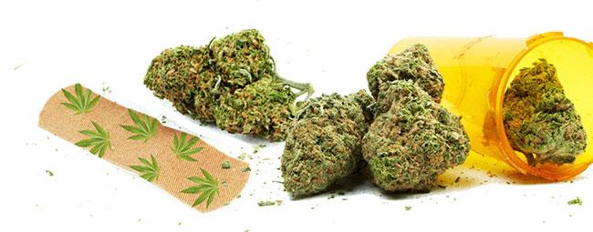 Band Aid Cannabis