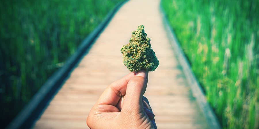 Good Weed, Bad Weed, Dank Weed