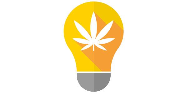 luci di cannabis