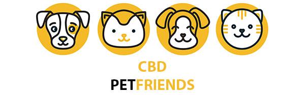 CBD per gli animali domestici