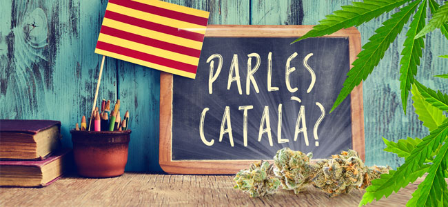 Catalan Cannabis