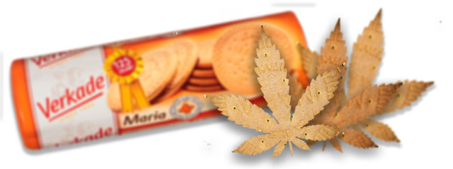Galleta de Verkade cannabis