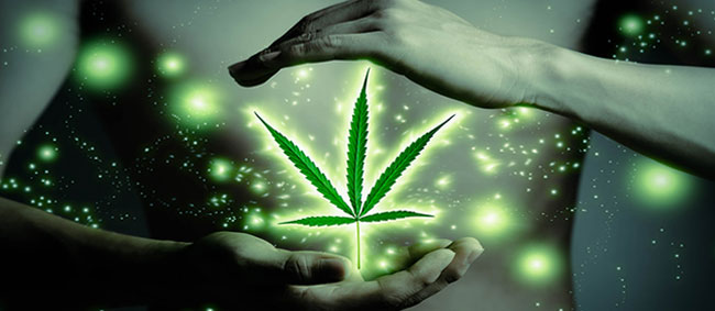 Macht der medizinischen Cannabis