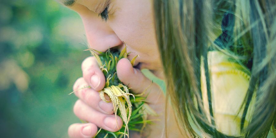 Reasons To Quit Tobacco: Your Sense Of Taste And Smell