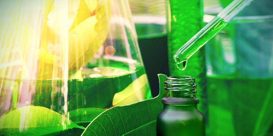Die Chemie Von Ayahuasca
