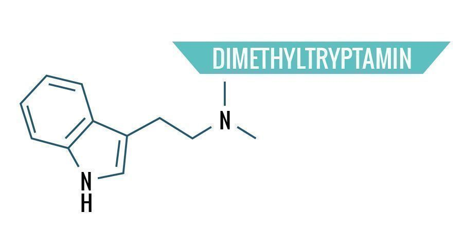 Dimethyltryptamin