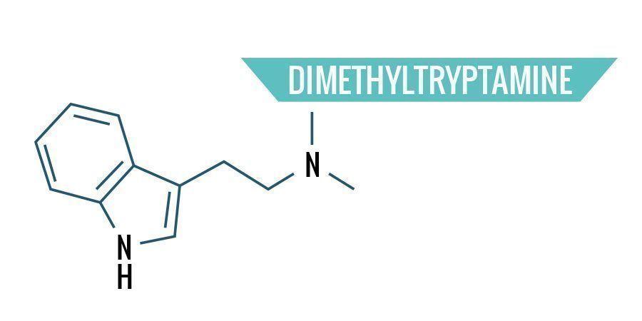 Dimethyltryptamine