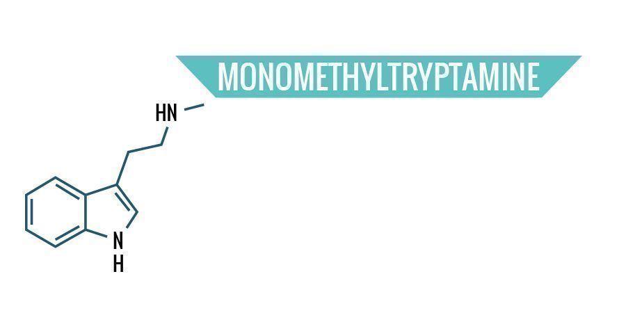 Monomethyltryptamine