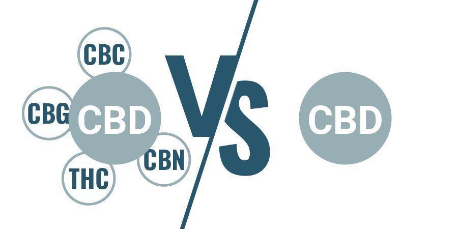 Vollspektrum Versus CBD Isolat