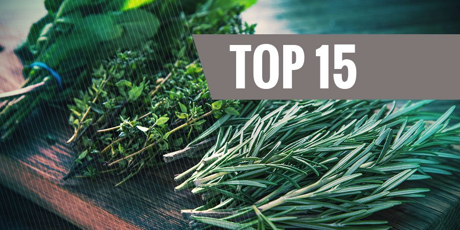 Top 15 Best Legal Herbs To Vaporize