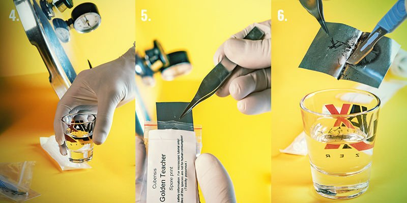 Spore Syringe Step-By-Step Directions: Steps 4-6