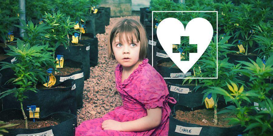 CBD und Epilepsie: Charlotte's Geschichte