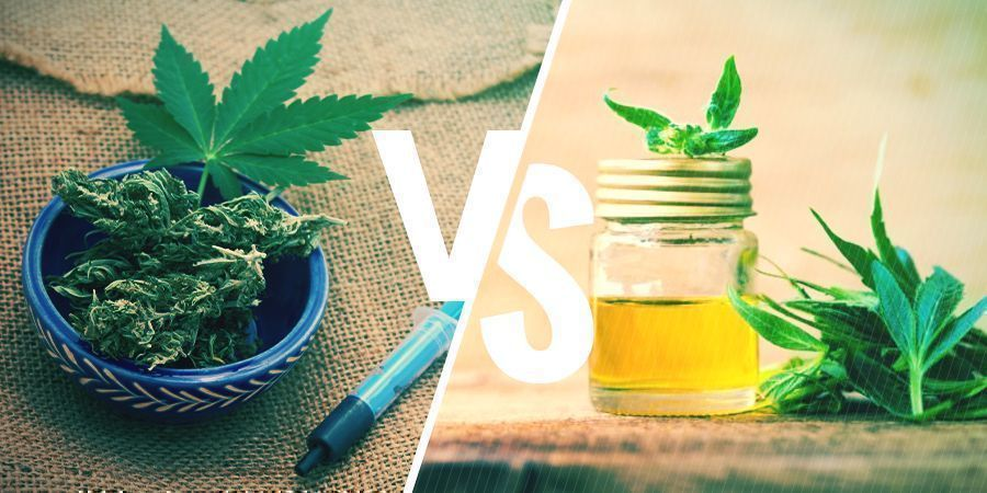 CBD Oil vs. Rick Simpson Oil